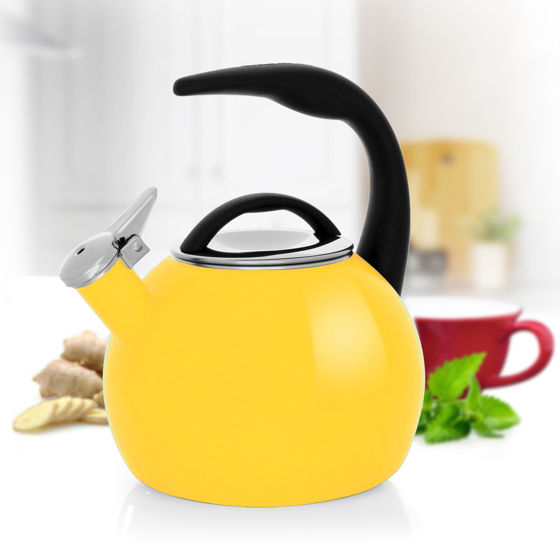 Chantal 2-qt Enamel-on-Steel Anniversary Teakettle